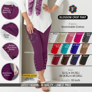 Blossom Crop Stretchable Cotton Ethnic & Western Style Pant ( 12 Pcs Catalogue )